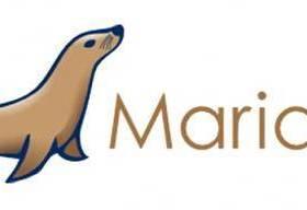 Mysql or MariaDB常用命令